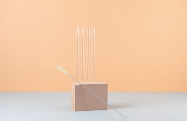 4 soulstraws gerade + strawbrush Reinigungsbürste im Set