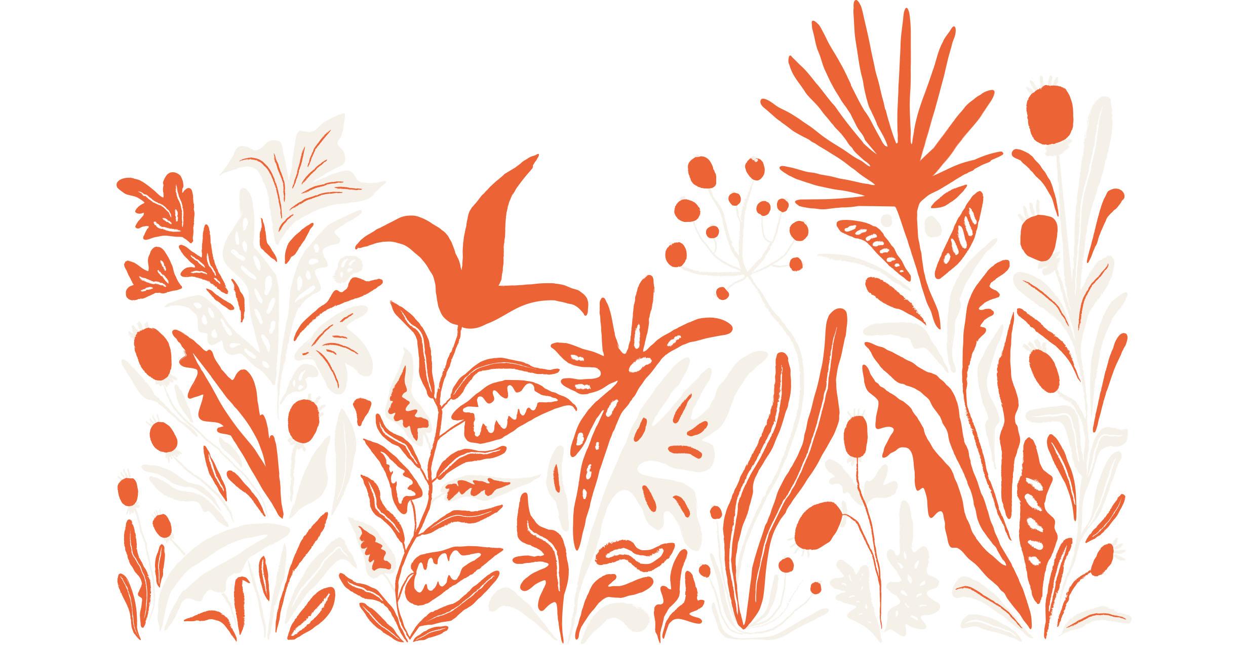 Blog_Designportrait-Wildblumen_Bild2